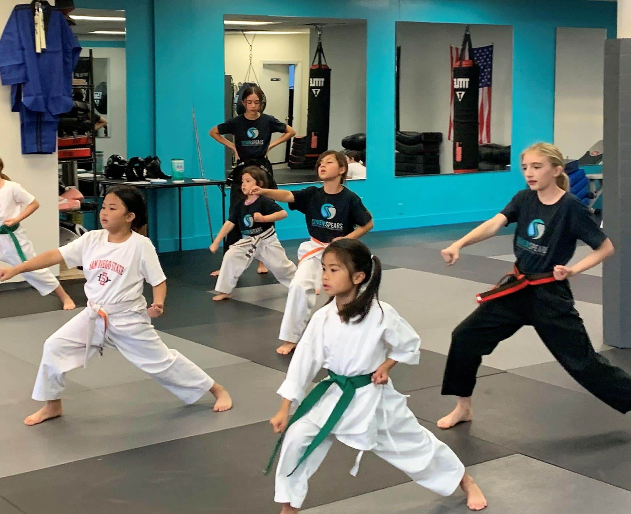 Seven Spears Martial Arts Academy Gallery Photo Number 8